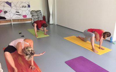 Fyzioterapeutická jóga …aneb Fyzioterapie a/nebo Jóga?